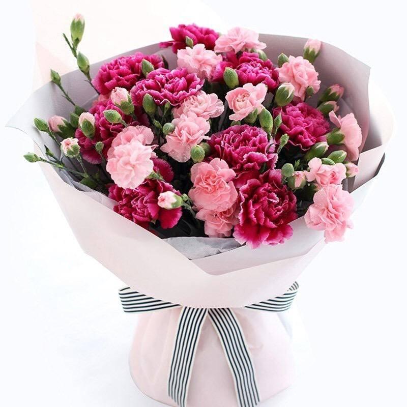 【同城礼品花专人送花上门】红粉康乃馨花束·教师节母亲节妇女节亲人全国同城配送