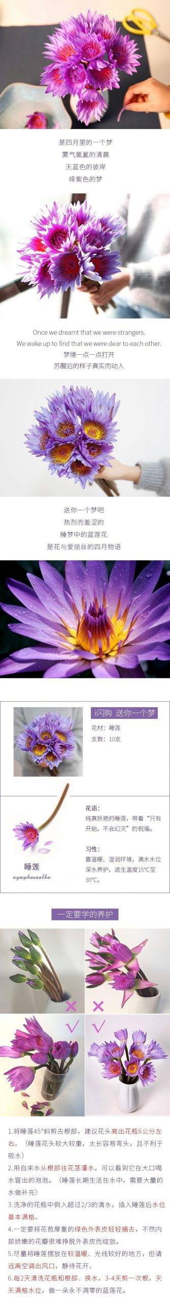 【气质女神】 | 气质女神紫睡莲,清纯脱俗